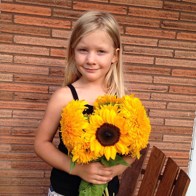 We got some pretty sunflowers for our centerpiece for tomorrow's dinner, celebrating our friend @tracycaretto birthday. And checka looks so grown up its crazy. Where does the time fly, can't believe she's going to be 6 in 2 months. My beautiful Franchesca... Don't grow up so fast. #sunflowers #flowers #yellow #franchesca #Checka #daughter #vsco #vscokids #sunshine